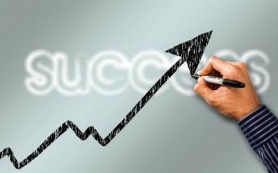 La Organización del Éxito Comercial